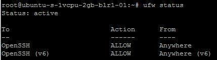 Ubuntu firewall status